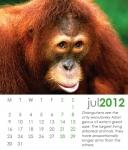 CD Case Calendar 001