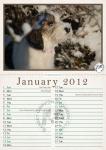 Double A4 Calendar Design 004