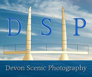 DSP1 - Copy (4)