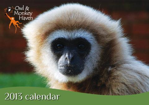 Owl & Monkey Haven Calendar 2013