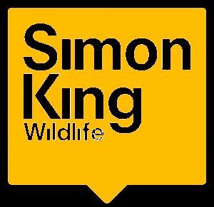 SKW-logo